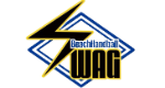 ビーチハンドボールチーム『SWAG』オフィシャルサイト